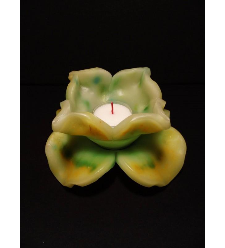 Fleur de Bougie vert/jaune