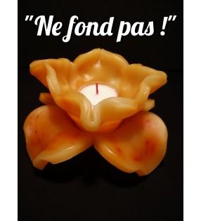Décor de table original, fleur de bougie orange