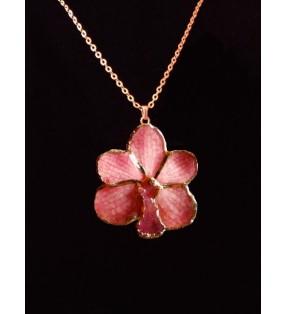 Bijou fantaisie original doré, fleur orchidée Asconcenda, Rose