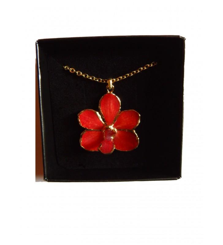Bijou orchidée Rouge, présenté dans son écrin de velours noir
