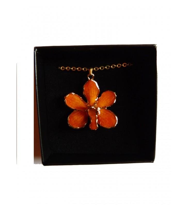 Bijou orchidée Orange, présenté dans son écrin de velours noir