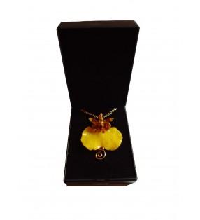 Bijou doré, fleur orchidée Oncidium, Jaune, présenté dans son écrin de velours noir