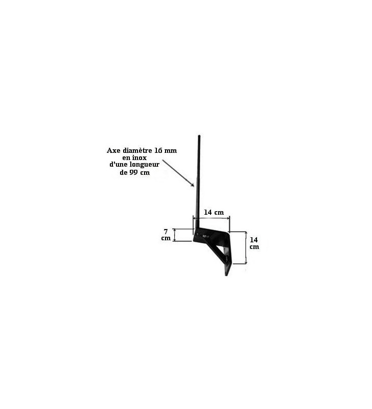 Girouette de toit Brochet, en acier ou en inox